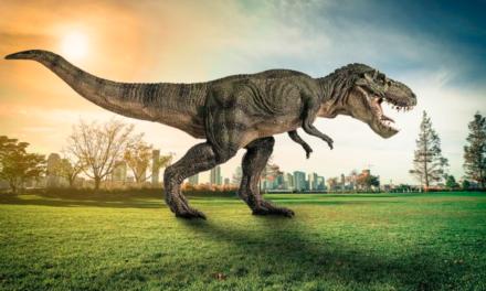 ¿Cuántos millones de Tyrannosaurus rex habitaron la Tierra?